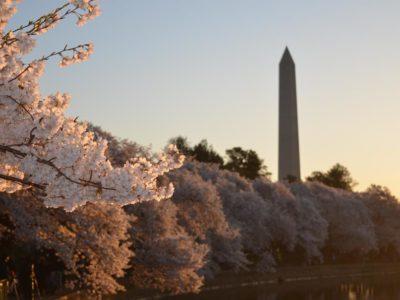 Washington D.C. Learning Session